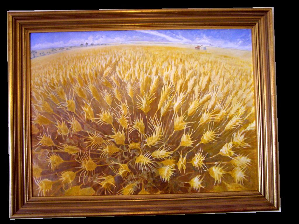 Wheat filed